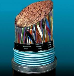 HYA全塑市话电缆