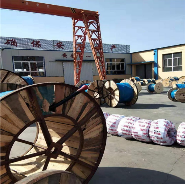 天津市电缆总厂第一分厂 (3).png
